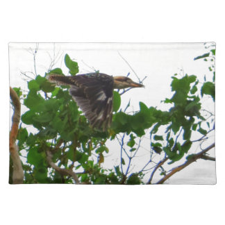 KOOKABURRA IN FLIGHT QUEENSLAND AUSTRALIA PLACEMAT