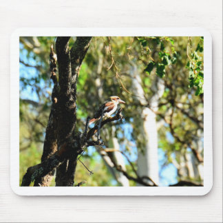KOOKABURRA IN TREE QUEENSLAND AUSTRALIA MOUSE PAD