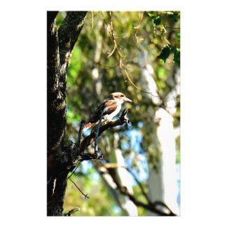 KOOKABURRA IN TREE QUEENSLAND AUSTRALIA STATIONERY