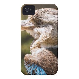 Kookaburra iPhone 4 Case