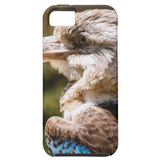 Kookaburra iPhone 5 Cases