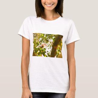 KOOKABURRA QUEENSLAND AUSTRALIA T-Shirt