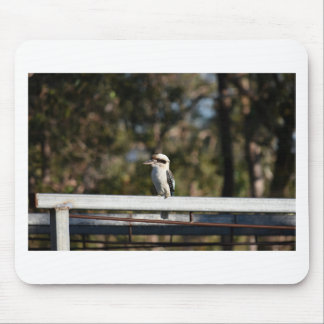 KOOKABURRA RURAL QUEENSLAND AUSTRALIA MOUSE PAD