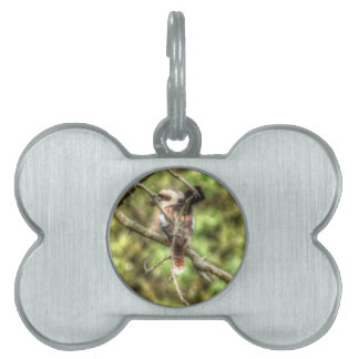 KOOKABURRA & WILLIE WAGTAIL QUEENSLAND AUSTRALIA PET NAME TAG