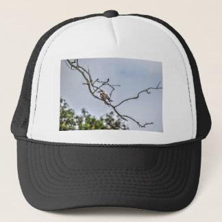 KOOKABURRA & WILLIE WAGTAIL QUEENSLAND AUSTRALIA TRUCKER HAT