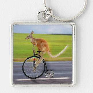 Krazy Kangaroo Keychain