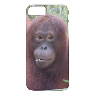 Krista Orangutan Borneo Rainforest Flirt iPhone 7 Case
