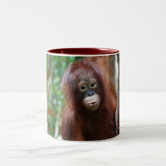Krista Orangutan Fan Club mug