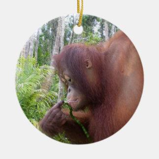Krista Orangutan in Borneo Ceramic Ornament