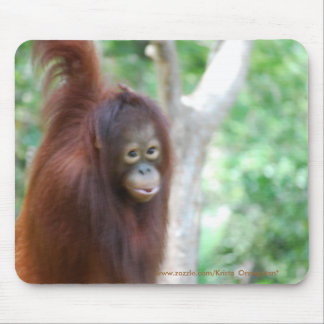Krista Orangutan Jungle Animal Conservation Mouse Pad