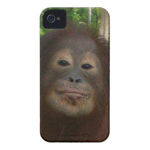 Krista Orangutan mugshot Blackberry Bold Case