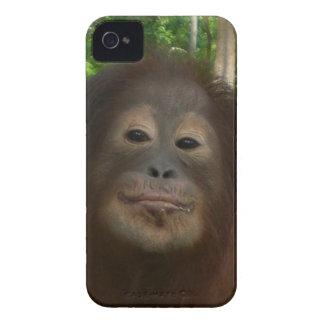 Krista Orangutan mugshot Case-Mate iPhone 4 Cases