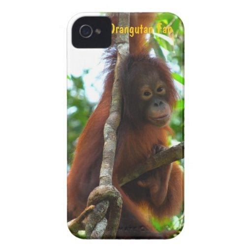 Krista Orangutan Official Fan Club Photo Blackberry Case