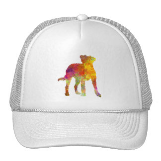 Kromfohrlander in watercolor trucker hat