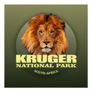 Kruger NP (Lion) WT Poster