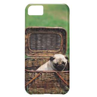 KRW Adorable Pug Puppy iPhone 5 Case