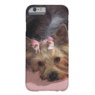 KRW Adorable Yorkie Dog iPhone 6 case Barely There iPhone 6 Case