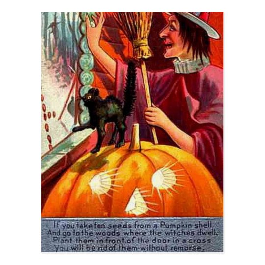 KRW Vintage How to Get Rid of Witch Postcard