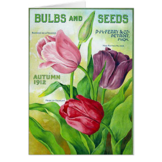 KRW Vintage Perry Seed Catalog 1912 Card