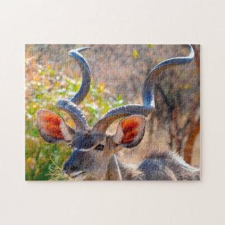 Kudu Botswana. Jigsaw Puzzle