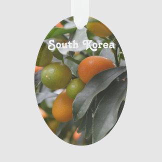 Kumquats from South Korea