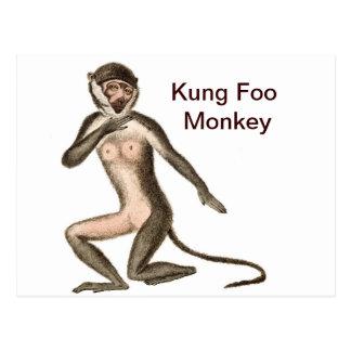 Kung Foo Monkey Postcard