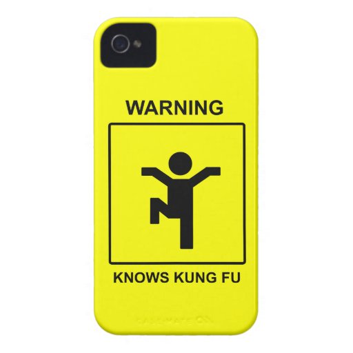 Kung Fu Blackberry Bold Cover