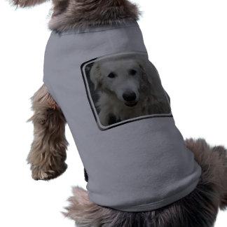 Kuvasz Dog Breed Shirt Pet Clothes
