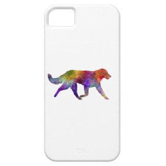 Kuvasz in watercolor 2 iPhone 5 case