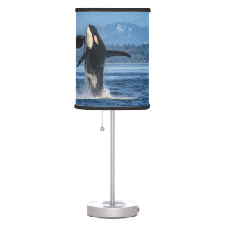 L92 Crewser 2 Orca Lamp