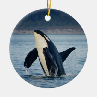 L92 Crewser Orca Ornament