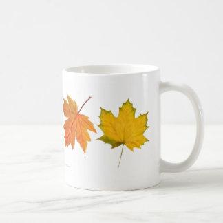 L érable d automne laisse la tasse