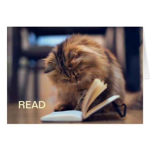 La carte de note studieuse de chat