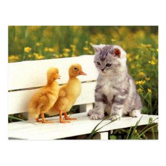 La carte postale laide de canard