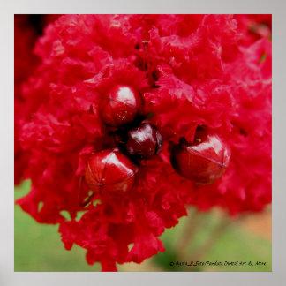 La crêpe le Myrte fleurit 24 x 24 matte Affiches