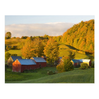 La ferme de Jenne dans Woodstock, Vermont. Chute. Carte Postale