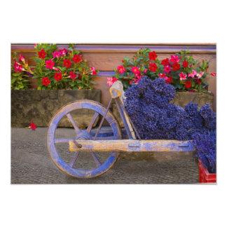 La France, Provence, Sault. Vieux chariot en bois  Photo