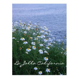 La Jolla Flowers and ocean Postcard