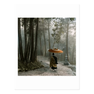 La lumière traverse pendant que le moine descend carte postale