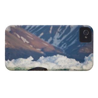 La Norvège, le Svalbard, île du Spitzberg, 2 Coque iPhone 4 Case-Mate