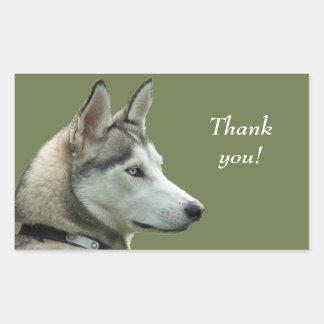 La photo sibérienne enrouée de chien vous remercie