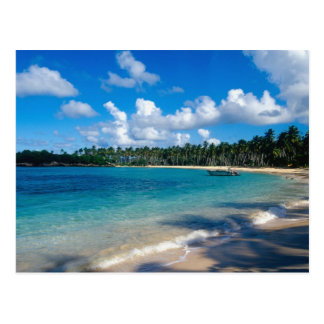 La Samana Peninsula, Dominican Republic, 2 Postcard