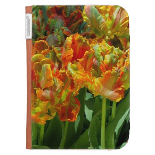 La tulipe de ressort allument la caisse étui kindle