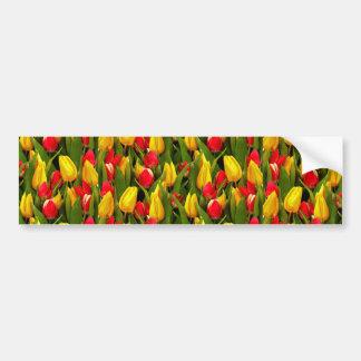 La tulipe jaune rouge fleurit le motif de photo autocollant de voiture