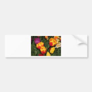 La tulipe rouge et jaune fleurit en fleur 6 autocollant de voiture