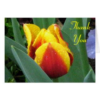 la tulipe rouge et jaune vous remercient carte de