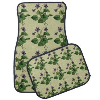 La violette douce fleurit floral pourpre d'été sur tapis de sol