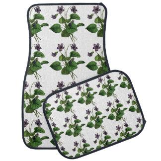 La violette douce fleurit floral vert pourpre d'ét tapis de sol