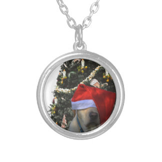 lab dog  in santa hat in front of christmas tree.j silver plated necklace