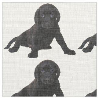 Lab Labrador Retriever Eyes Face Puppy Pet Fabric